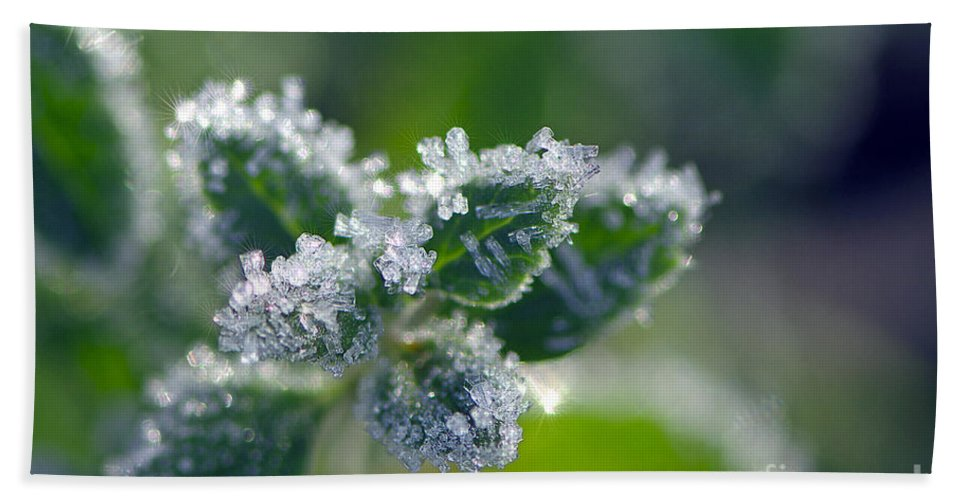Hoar Frost Beach Towel featuring the photograph Ice Crystals With Stars by Sharon Talson