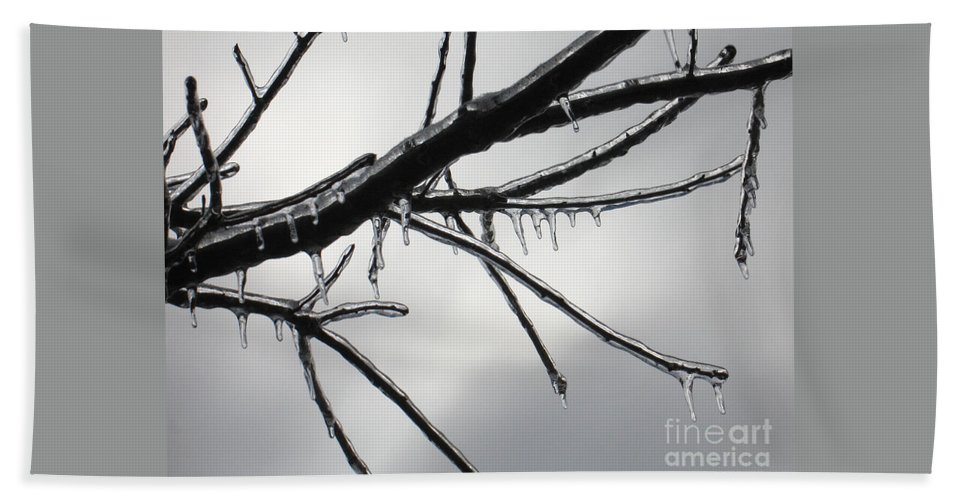 Winter Beach Towel featuring the photograph Iced Tree by Ann Horn