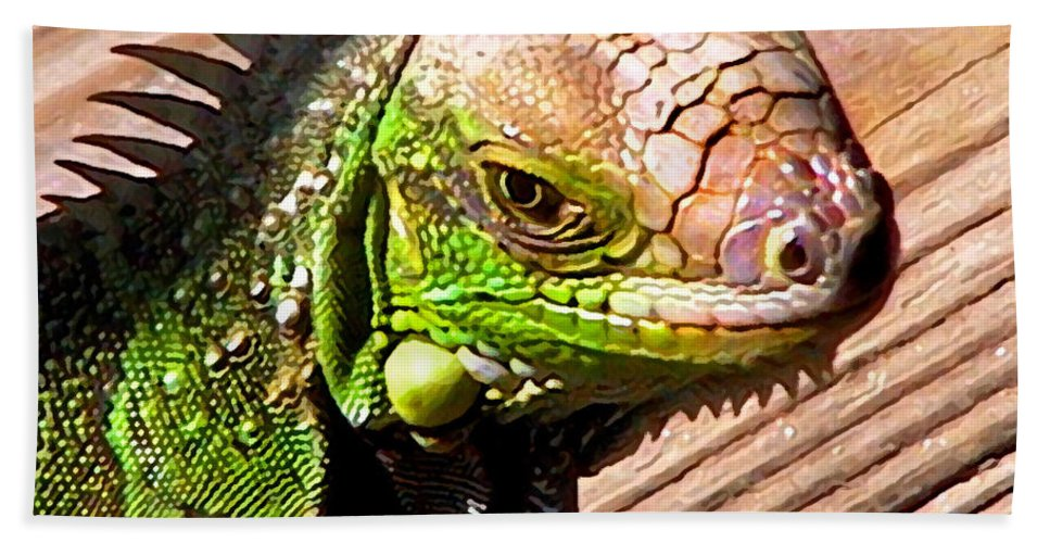 Iguana Beach Towel featuring the photograph Iguana On The Deck At Mammacitas by Duane McCullough