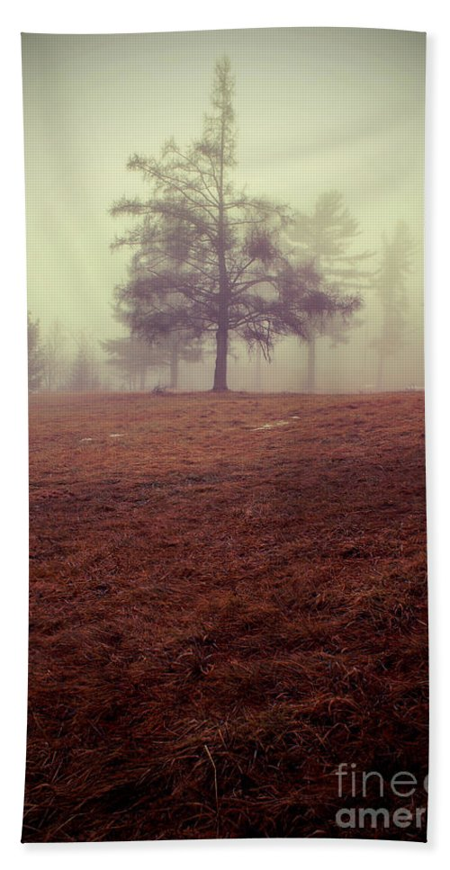 Tree Beach Towel featuring the photograph Imperfection by Aimelle