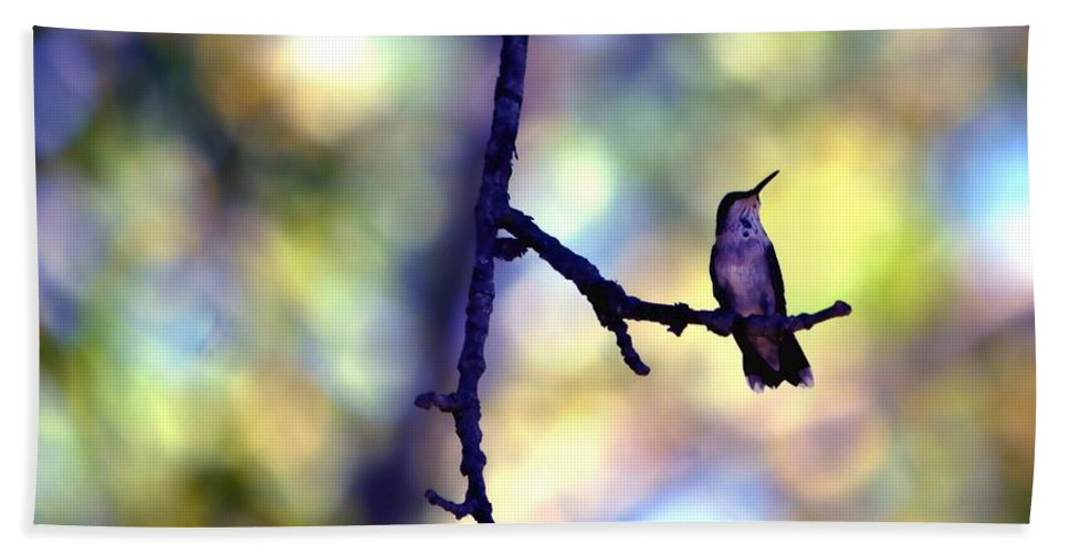 Bird Beach Towel featuring the photograph In The Last Of The Light by Deena Stoddard