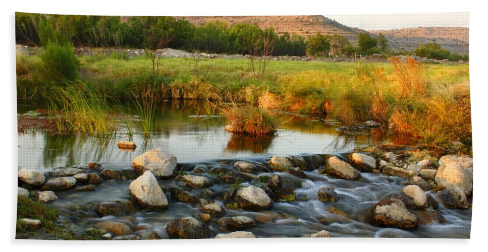 The Nature Conservancy Beach Towel featuring the photograph Independence Creek Preserve 2am-106000 by Andrew McInnes