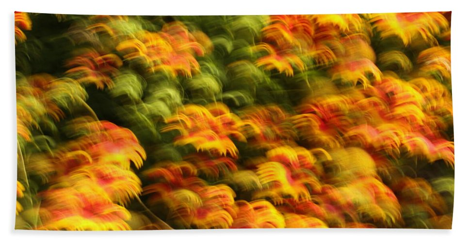Indian Blanket Beach Towel featuring the photograph Indian Blanket Psychedelic by Andrew McInnes