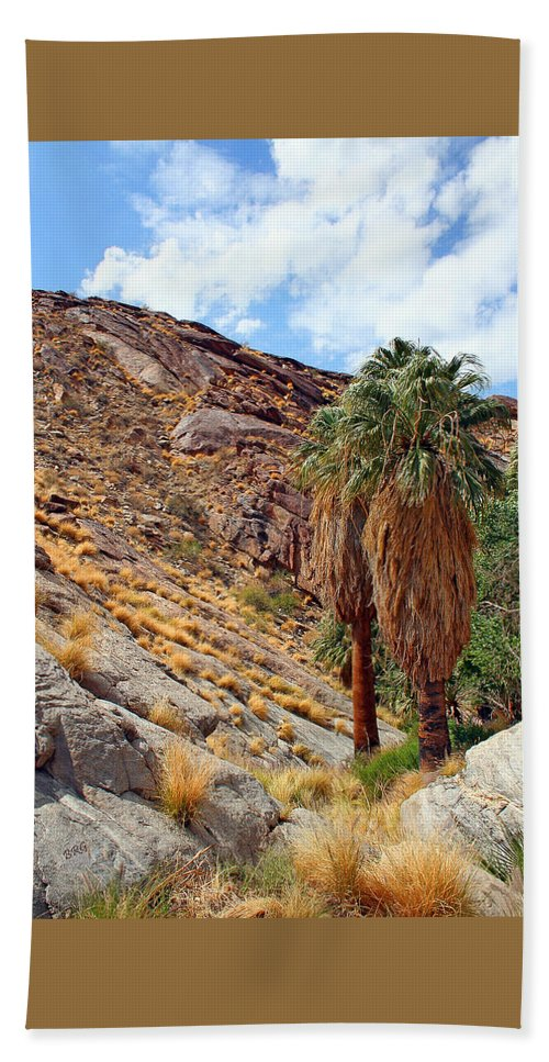 Desert Landscape Beach Towel featuring the photograph Indian Canyons View With Two Palms by Ben and Raisa Gertsberg