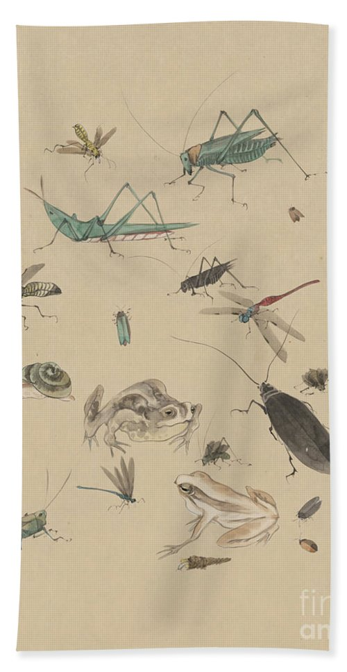 1825 Beach Towel featuring the photograph Insects C1825 by Granger