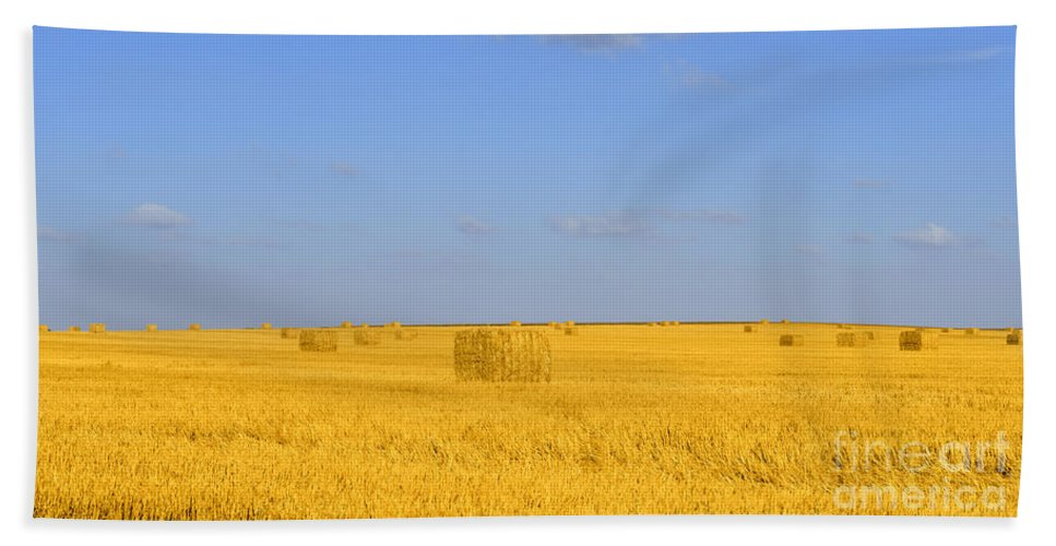 Straw Beach Towel featuring the photograph Israel Negev Habesor Landscape by Ezra Zahor