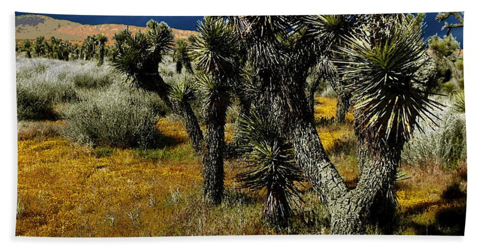 Joshua Beach Towel featuring the photograph Joshuas And Sage by Glenn McCarthy Art and Photography