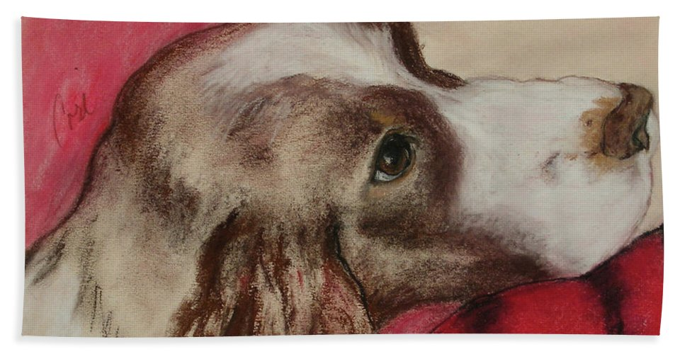 Springer Spaniel Beach Towel featuring the drawing Jourdan by Cori Solomon