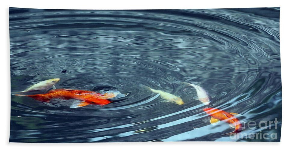 Beach Towel featuring the photograph Koi And Sky Reflection by Renee Croushore
