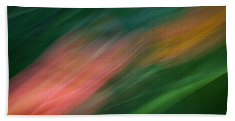 Motion Blur Beach Towel featuring the photograph Koi by Dayne Reast