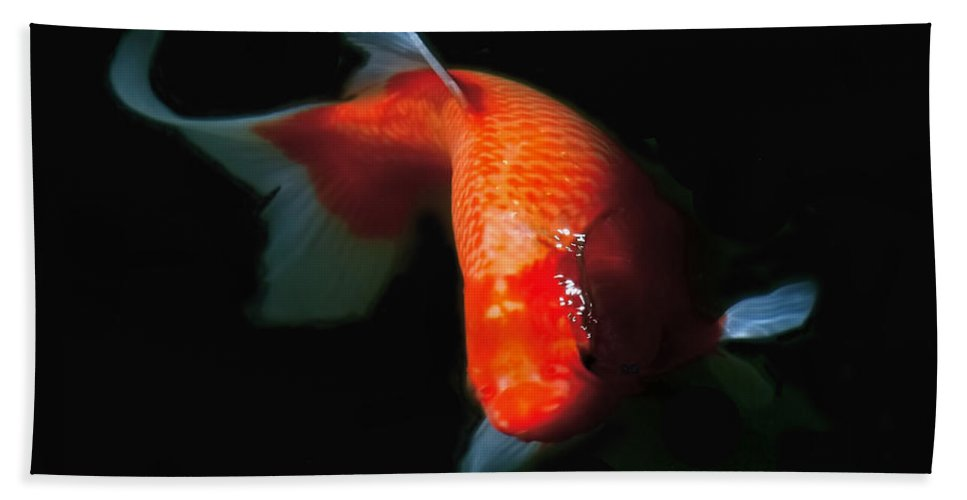 Koi Beach Towel featuring the photograph Koi by Rona Black