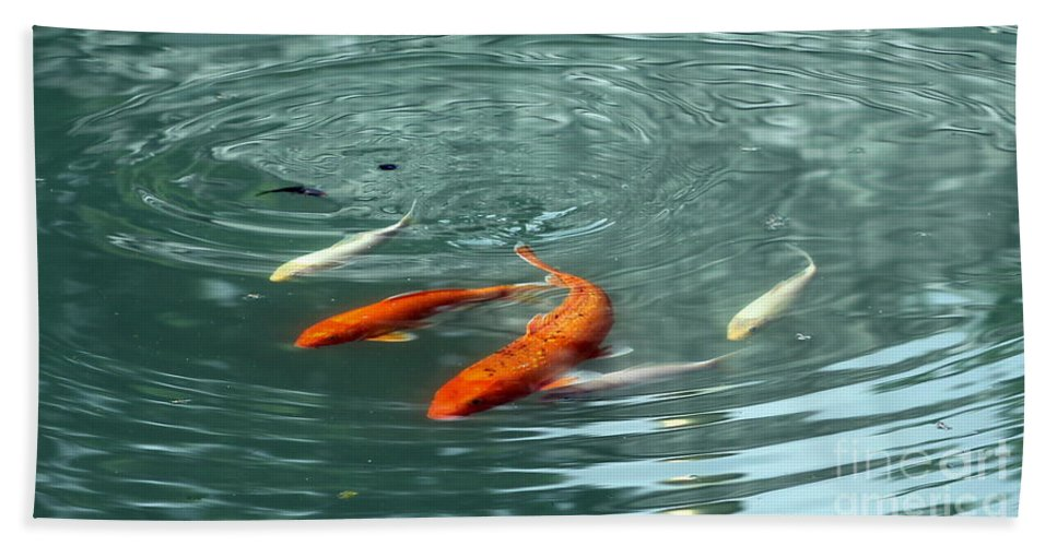 Blue Beach Towel featuring the photograph Koi With Sky Reflection by Renee Croushore