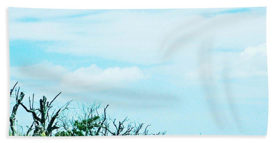 Marsh Beach Towel featuring the digital art La 57 Marsh Drive by Lizi Beard-Ward