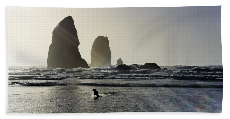 susan Molnar Beach Towel featuring the photograph Lady Jessica Of The Great Northwest by Susan Molnar