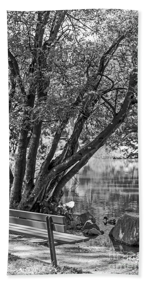 Bench Beach Towel featuring the photograph Lake Bench In Black And White by Kate Brown