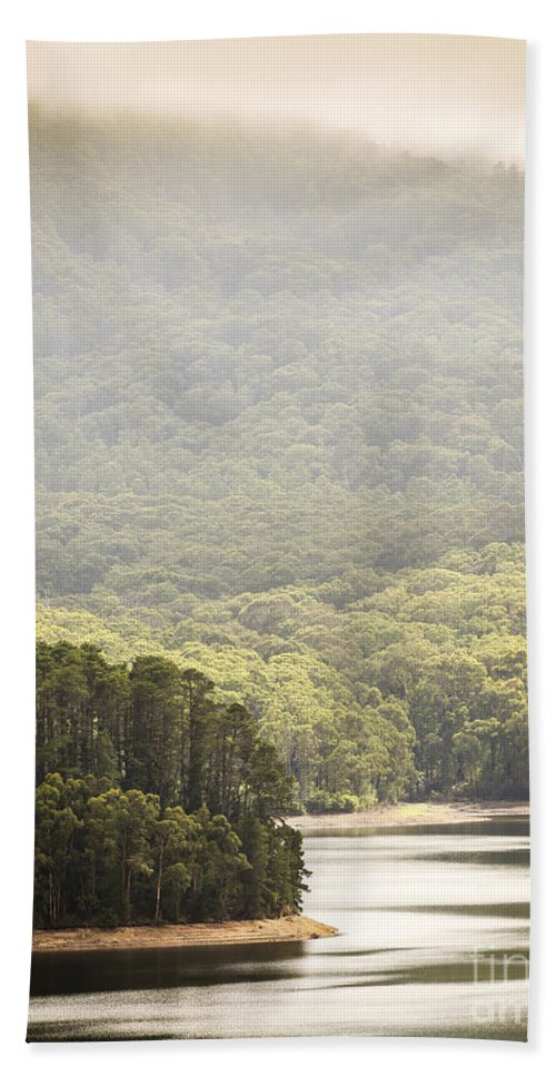 Lake Beach Towel featuring the photograph Lake Forest by Tim Hester