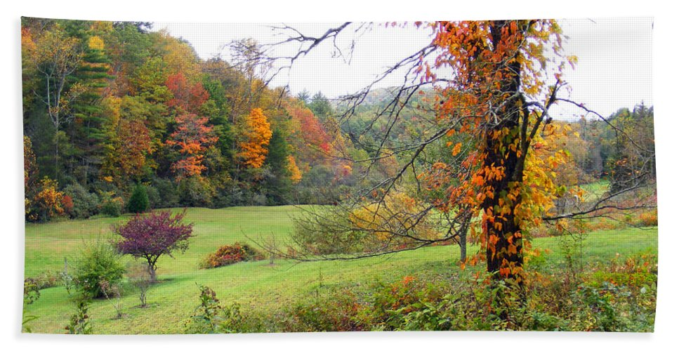 Duane Mccullough Beach Towel featuring the photograph Lamance Valley In The Fall by Duane McCullough