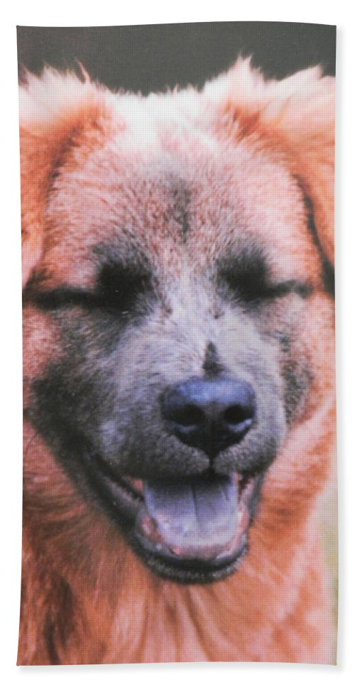 This Dog Beach Sheet featuring the photograph Laughing Dog by Belinda Lee