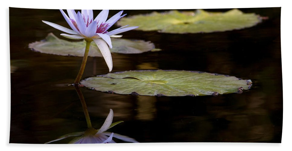 Amazing Beach Towel featuring the photograph Lavendar Reflections In The Lake by Sabrina L Ryan