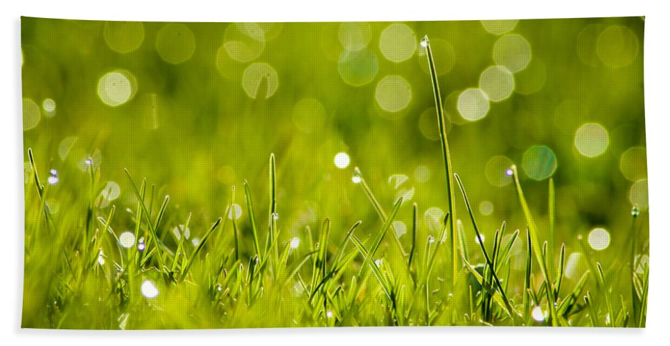 Bill Pevlor Beach Towel featuring the photograph Lawn Twinklers by Bill Pevlor