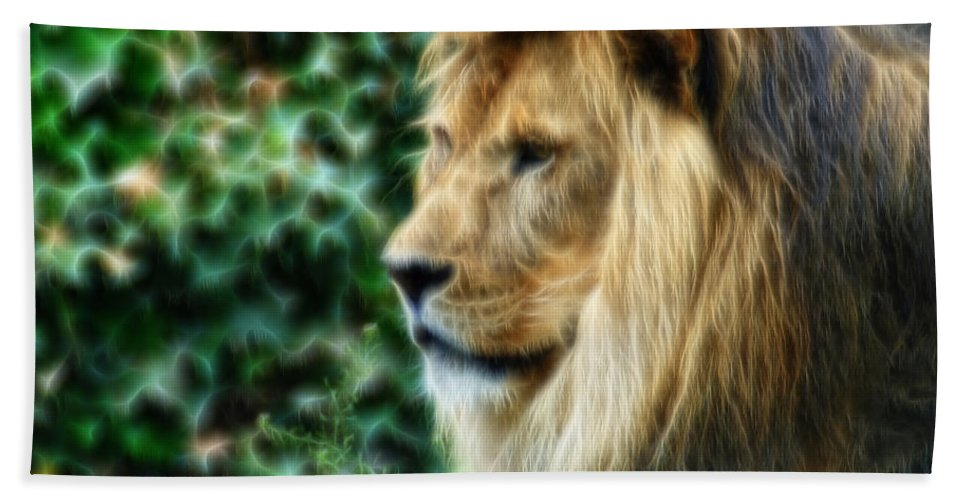 Lion Beach Towel featuring the photograph Lazy Boy Day Dream At The Buffalo Zoo by Michael Frank Jr