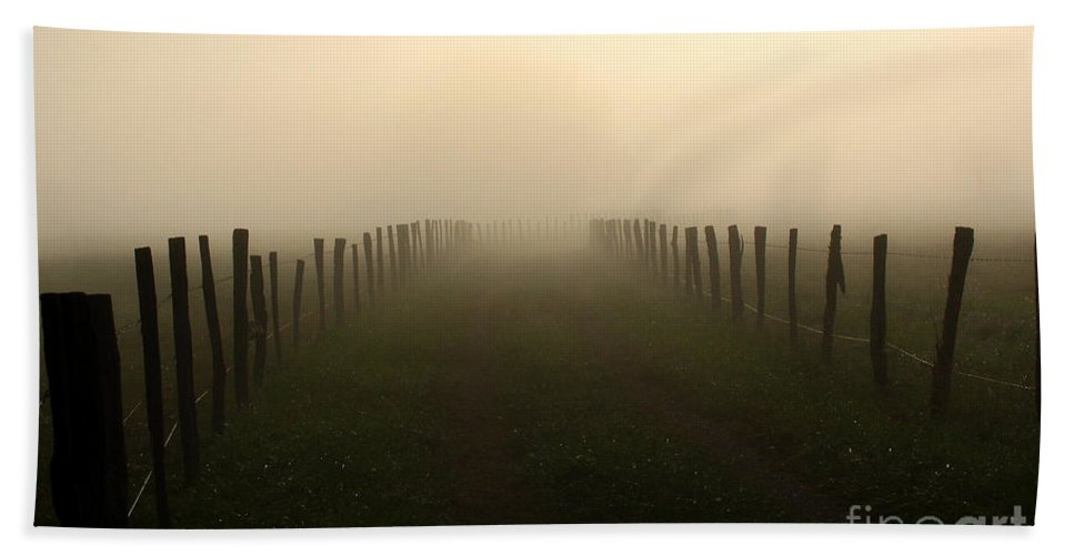 Light Beach Towel featuring the photograph Lead Me To The Light by Douglas Stucky