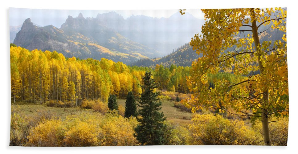Landscapes Beach Towel featuring the photograph Leaf Days by Eric Glaser