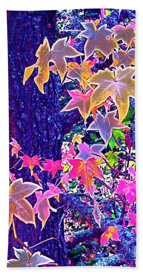 Nature Beach Towel featuring the photograph Leaves 1 by Pamela Cooper