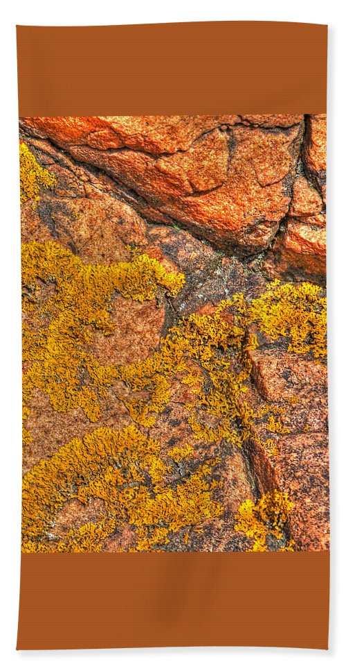 Lichens Beach Towel featuring the photograph Lichens On The Shoreline Rocks 2 by Gill Billington