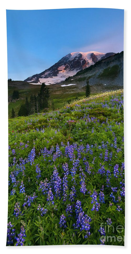 Meadow Beach Towel featuring the photograph Light On The Mountain by Mike Dawson