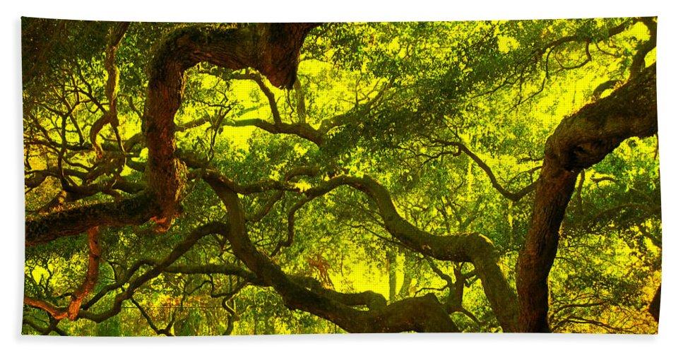 Angel Oak Beach Towel featuring the photograph Lighter version 40x40 by Susanne Van Hulst