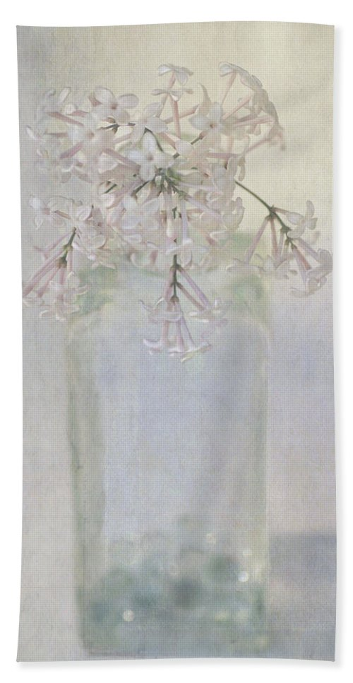 Lilac Beach Towel featuring the photograph Lilac Flower by Annie Snel