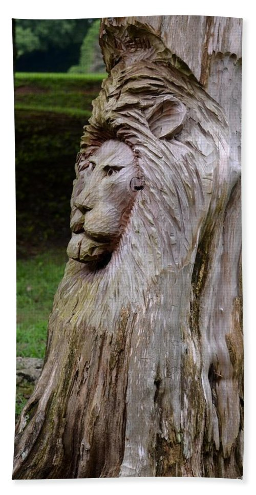 Lion Tree Beach Towel featuring the photograph Lion Tree by Maria Urso