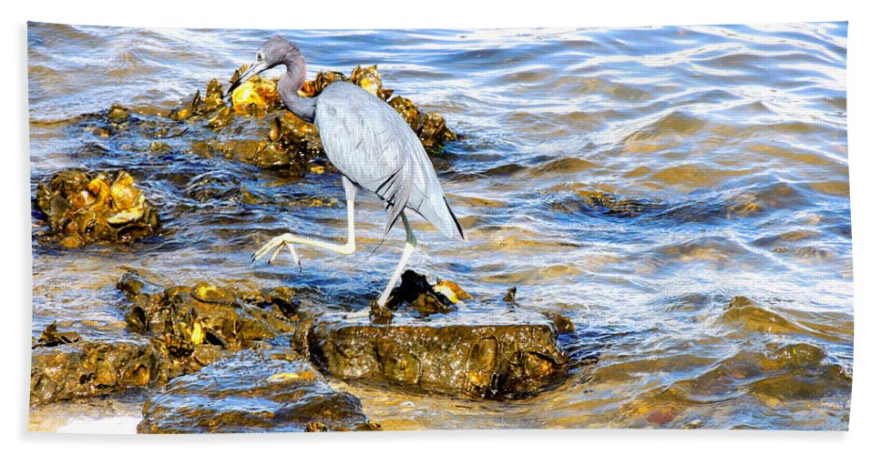 Wading Birds Beach Towel featuring the photograph Little Blue Heron by Marilyn Holkham
