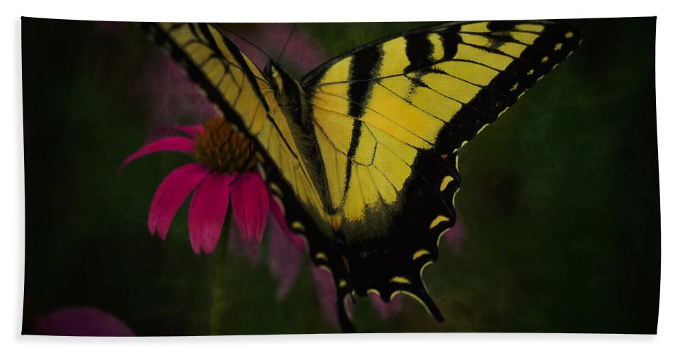 Swallow Tail Butterfly Beach Towel featuring the photograph Living The Life by Kim Henderson