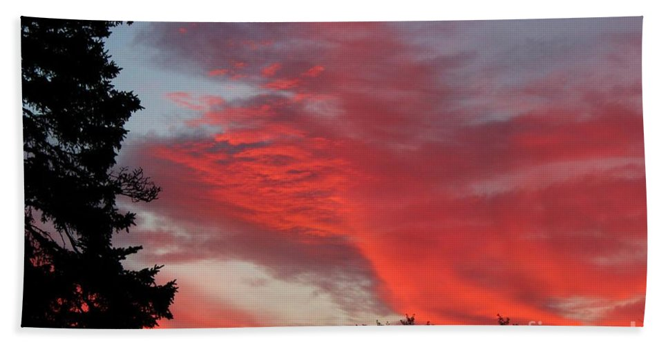 Lobster Sky Beach Towel featuring the photograph Lobster Sky by Barbara Griffin
