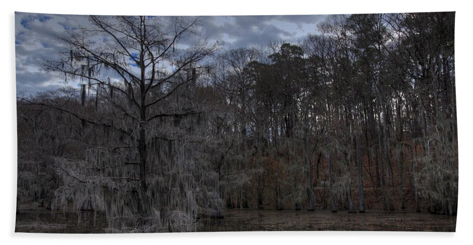 Bald Cypress Beach Towel featuring the photograph Lonely Bald Cypress by Jonathan Davison