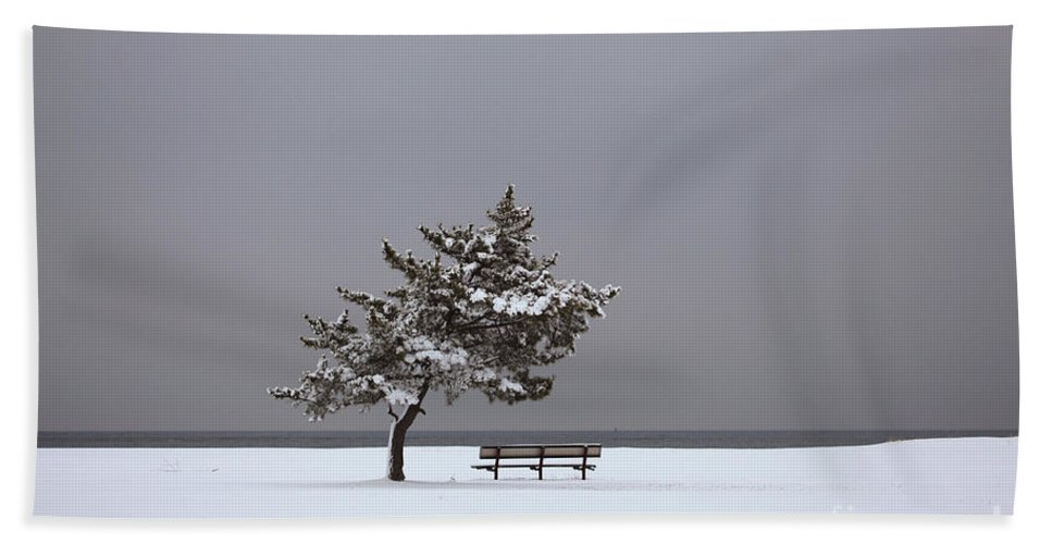 Winter Beach Towel featuring the photograph Lonesome Winter by Karol Livote
