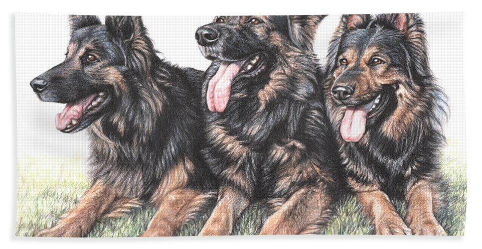 Dogs Beach Towel featuring the drawing Longhaired German Shepherds by Nicole Zeug