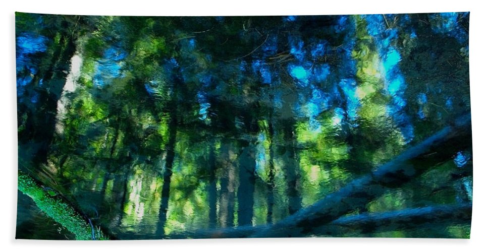 Blue Beach Towel featuring the digital art Look Into The Reflection by Teri Schuster