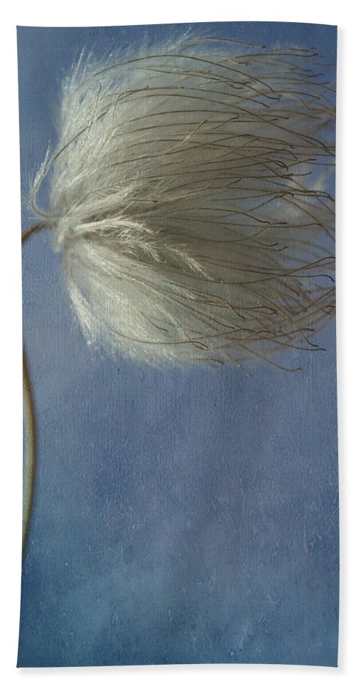 Flowers Beach Towel featuring the photograph Looking Right by The Artist Project