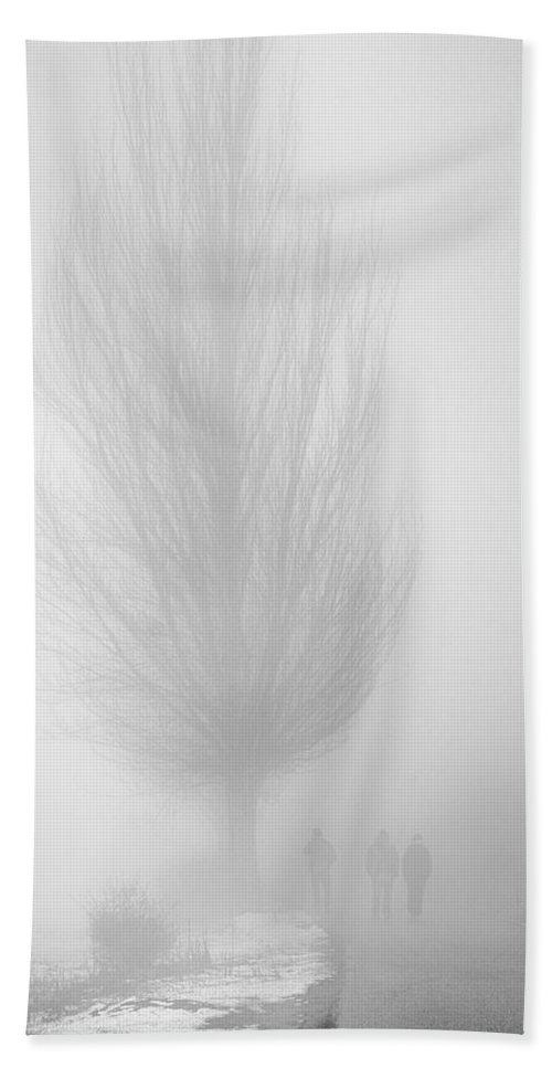 Trees Beach Towel featuring the photograph Lost In The Fog by Guido Montanes Castillo