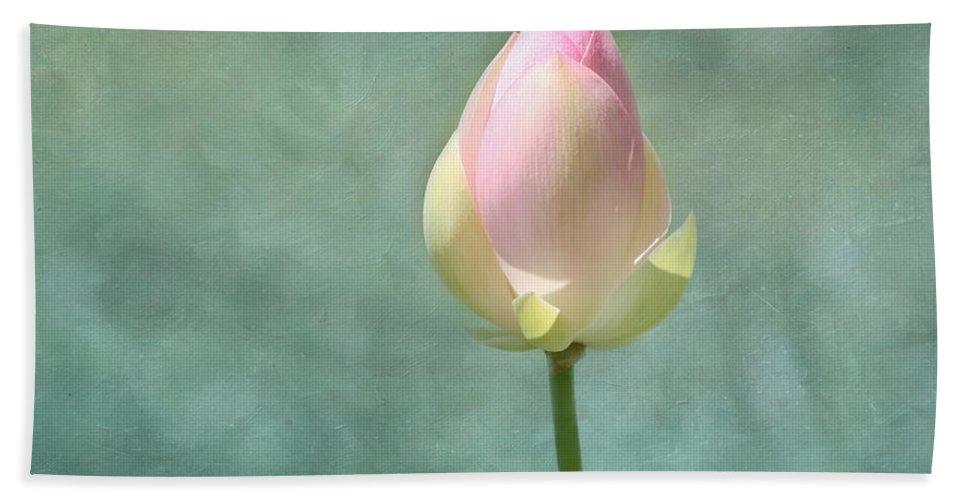 Lotus Beach Towel featuring the photograph Lotus Flower Bud by Kim Hojnacki
