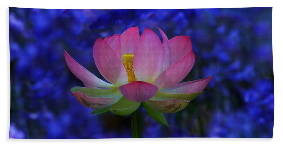 California Beach Towel featuring the photograph Lotus Flower In Blue by Beth Sargent