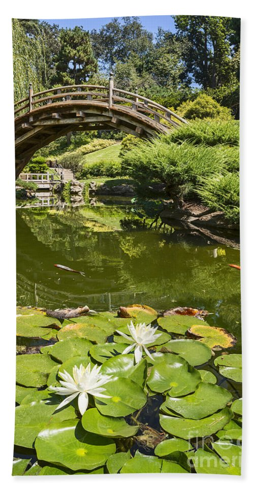 Japanese Garden Beach Towel featuring the photograph Lotus Garden - Japanese Garden At The Huntington Library. by Jamie Pham