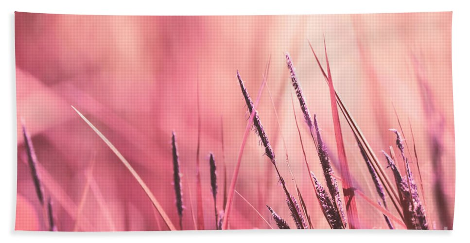 Pink Beach Towel featuring the photograph Luminis - S09c - Pink by Variance Collections