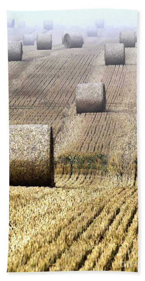 Agriculture Beach Towel featuring the photograph Make Hay While The Sun Shines by Heiko Koehrer-Wagner