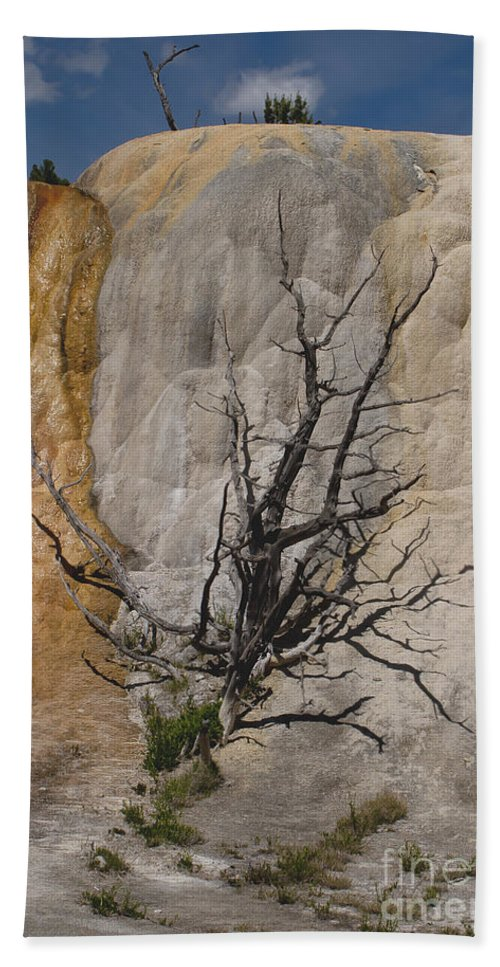 Calcite Formations Beach Towel featuring the photograph Mammoth Formation #0290 by J L Woody Wooden