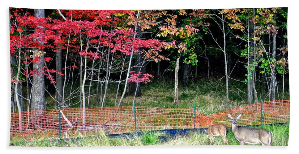 Nature Beach Towel featuring the photograph Man Ruins Nature by Frozen in Time Fine Art Photography