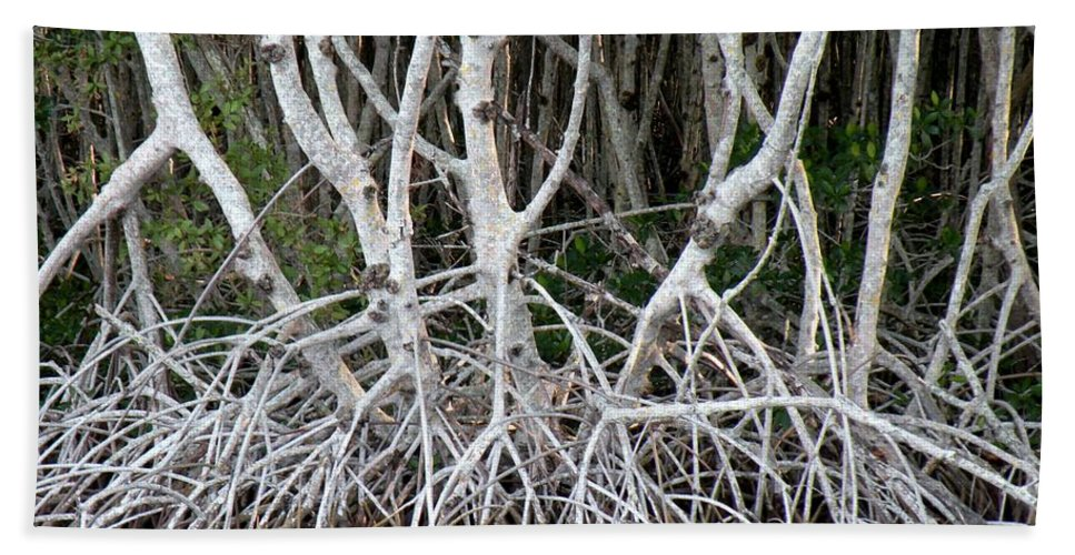 Trees Beach Towel featuring the photograph Mangrove Roots by Rosalie Scanlon